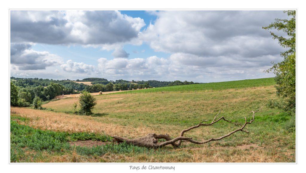 Pays de Chantonnay